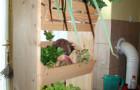 Obisk ekološke kmetije in centra za ravnanje z odpadki