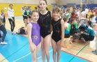 Državno prvenstvo osnovnih šol v športni gimnastiki