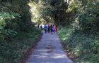Začutimo gozd – dejavnosti v okviru Mreže gozdnih vrtcev in šol