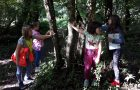 Podružnična šola Vreme postala del Mreže gozdnih vrtcev in šol