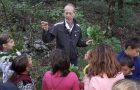 Obisk jesenskega gozda z gozdarjem – dejavnosti v okviru Mreže gozdnih vrtcev in šol