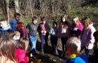 Ustvarjajmo v gozdu – dejavnosti v okviru Mreže gozdnih vrtcev in šol