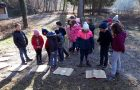 Gozdni raziskovalci – dejavnosti v okviru Mreže gozdnih vrtcev in šol